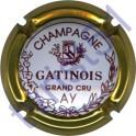 GATINOIS n°01 contour or