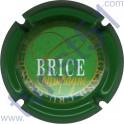 BRICE n°14 contour vert