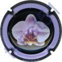 MIGNON Pierre n°52 Orchidée fond noir